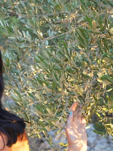 Sex ad by kinky escort Liza in Larnaca - Photo: 6
