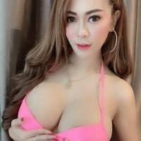 Luxury Thai Models Bangkok Escorts - Sex ads of the best escort agencies in Taipei - Dolly
