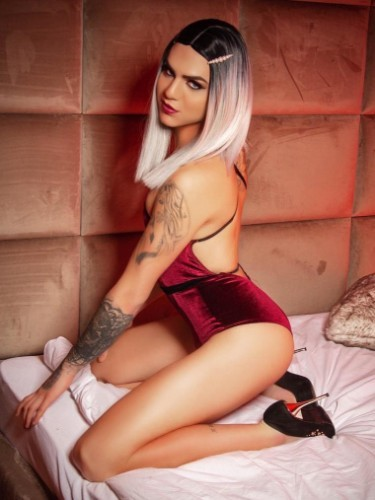Sex ad by kinky escort shemale Ts Eva (21) in London - Photo: 1