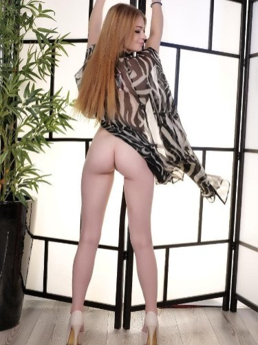Sex ad by kinky escort Liza (25) in Larnaca - Photo: 6